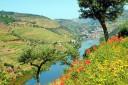 Portugál hajóút portói borvidék Douro-folyó