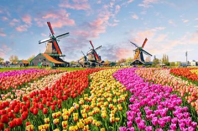Körutazás Hollandiában és Belgiumban- repülő úttal -MS Klimt